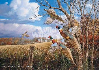 David Maass October Memories - Pheasants Giclee on Canvas