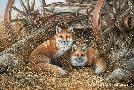 Rosemary Millette Rustic Retreat - Red Fox