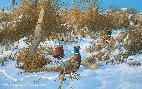 Michael Sieve Corner Post Refuge - Pheasants