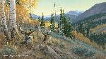 Michael Sieve Indian Summer - Mule Deer
