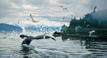 Michael Sieve Soundings - Humpback Whales