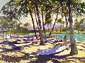 Darrell Hill Three Canoes And Palm Shadows