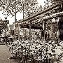 Alan Blaustein Paris #5