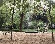 Alan Blaustein Banc De Jardin #10