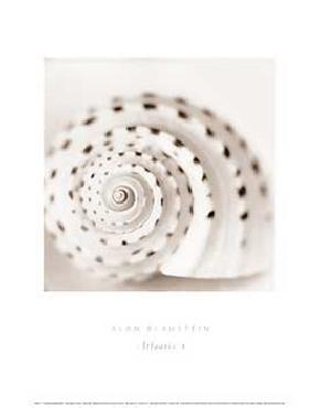 Alan Blaustein Atlantis 1