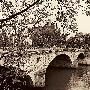 "Alan Blaustein ""pont Louis - Philippe, Paris"""