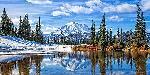 Michael Broom Mt. Rainier VIsta