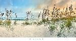 Doug Cavanah Beach Pastels