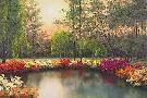 Diane Romanello Autumn Sunset