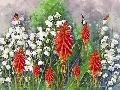 Ata Alishahi Nature And Beauty