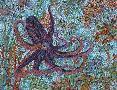 Erika Pochybova Octopus