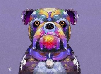Fernando Palma Bulldog I