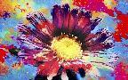 Fernando Palma Flower Xiii