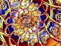 Fractalicious Cause