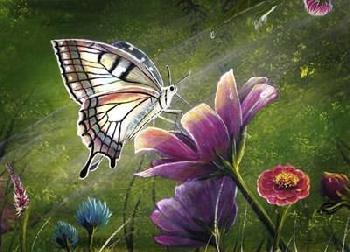 Greg Farrugia Butterfly