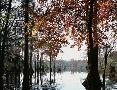 Images In Nature Southern Charm