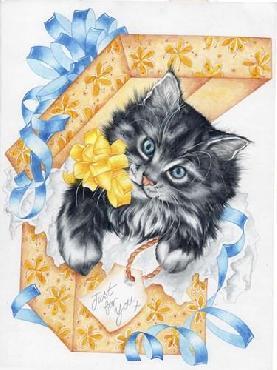 Karen Middleton Giftbox Kitten