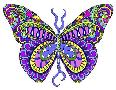 Kathy G. Ahrens Bashful Garden Butterfly Blooming