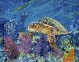 Lucy P. Mctier Loggerhead Turtle