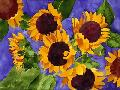 Mary Russel New Mexico Sunflowers