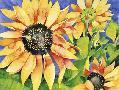 Mary Russel Magic Sunflowers