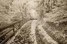Monte Nagler Fence & Pathway, Munising, Michigan 12