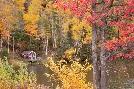 Monte Nagler Boathouse In Autumn, Marquette, Michigan 12