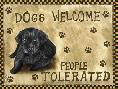 Tina Nichols Dogs Welcome