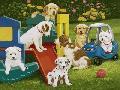 William Vanderdasson Puppy Playground