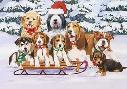 William Vanderdasson Sled Dogs