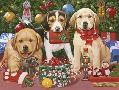 William Vanderdasson Which One?s Mine? Xmas Puppies