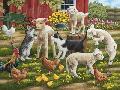 William Vanderdasson Lambs On The Loose