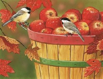 William Vanderdasson Apples In Basket With Chickadees