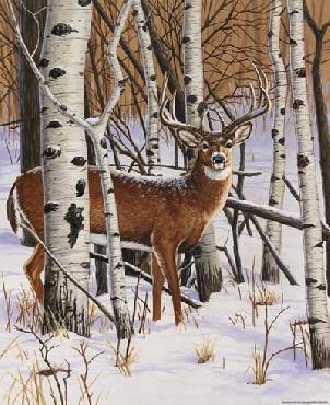 William Vanderdasson On The Lookout Canvas
