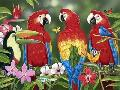 William Vanderdasson Tropical Friends