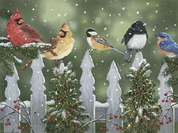 William Vanderdasson Winter Birds On A Snowy Fence