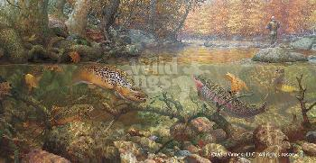 Mark Susinno Autumn Dream Day - Trout Fishing Artist
