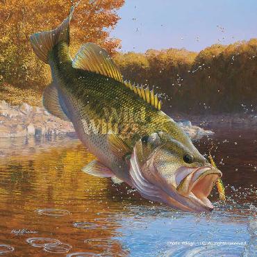 Mark Susinno Cartwheeling - Largemouth Bass Remarque on Paper
