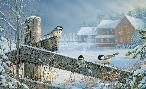 Sam Timm Winter Chickadees