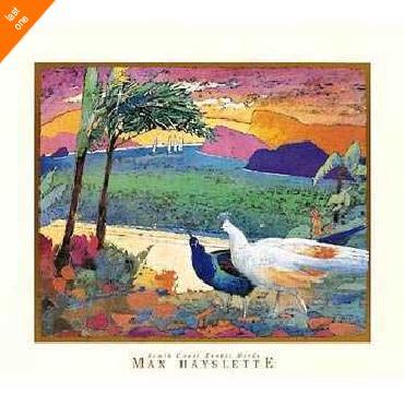 Max Hayslette South Coast Exotic Birds NO LONGER IN PRINT - LAST ONES!!