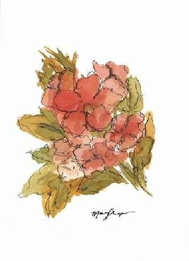 Marcy Chapman Coral Floral