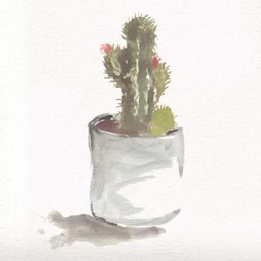 Marcy Chapman Watercolor Cactus Still Life II
