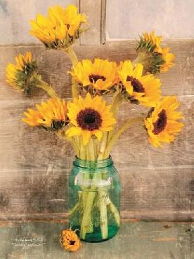Anthony Smith Country Sunflowers I Canvas