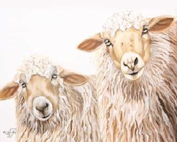 Diane Fifer Ba Ba White Sheep Canvas