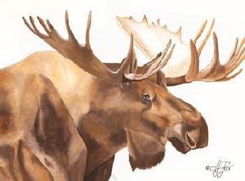 Diane Fifer Moose Be Single