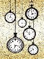 Pavlova Glitter Watches