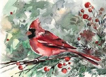 Sophia Rodionov Christmas Cardinal