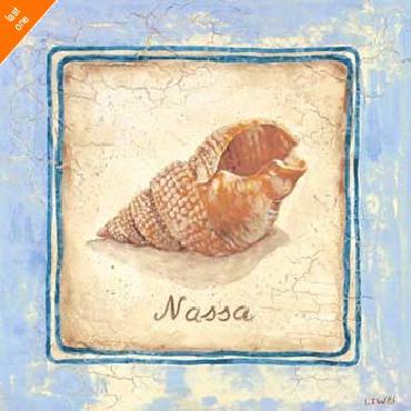 Sylvan Lake Collections Nassa Canvas LAST ONES IN INVENTORY!!