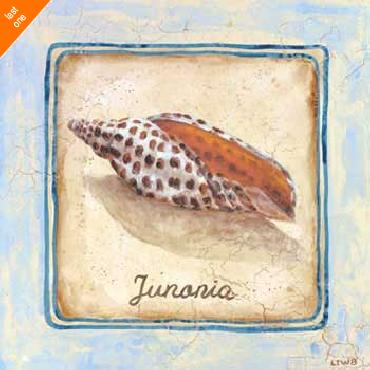 Sylvan Lake Collections Junania Canvas LAST ONES IN INVENTORY!!
