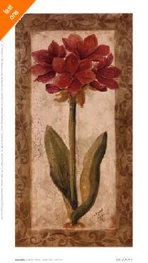 Sylvan Lake Collections Sylvan Lake Collections  -  Amaryllis Canvas LAST ONES IN INVENTORY!!